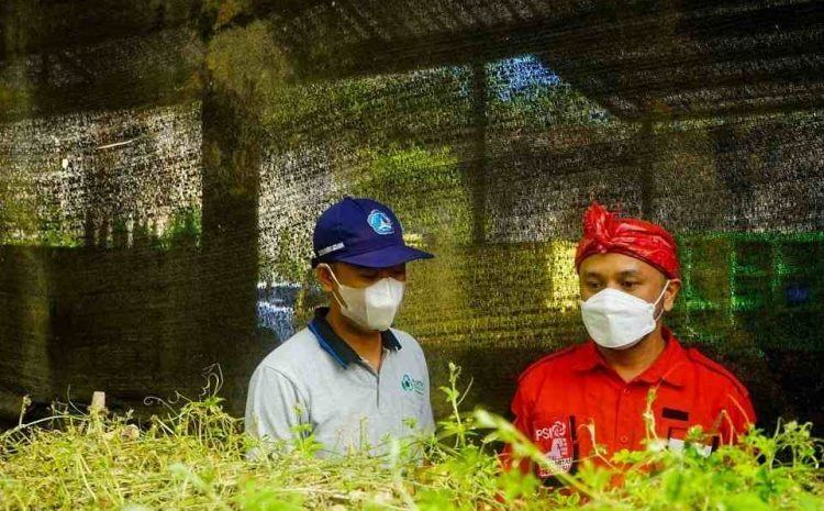 Bangkitkan Pariwisata Bali, PSI Dukung Penuh Pengembangan Agrowisata di Badung